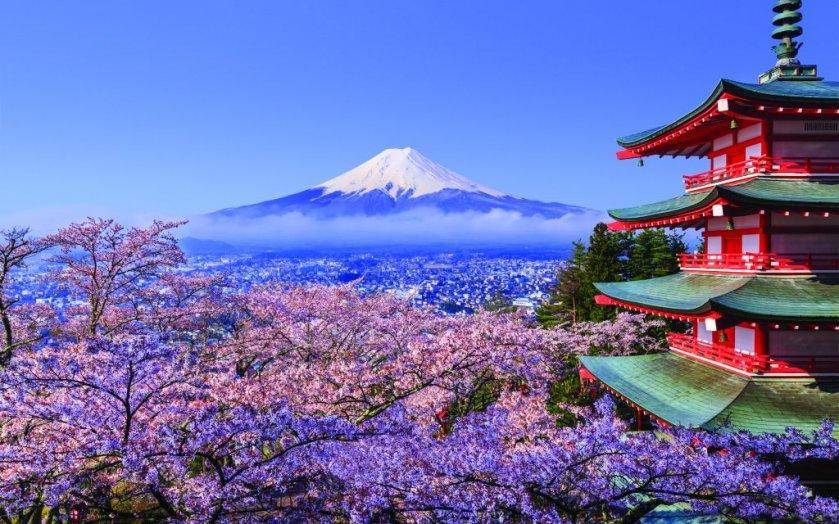 japanese, bitlicense