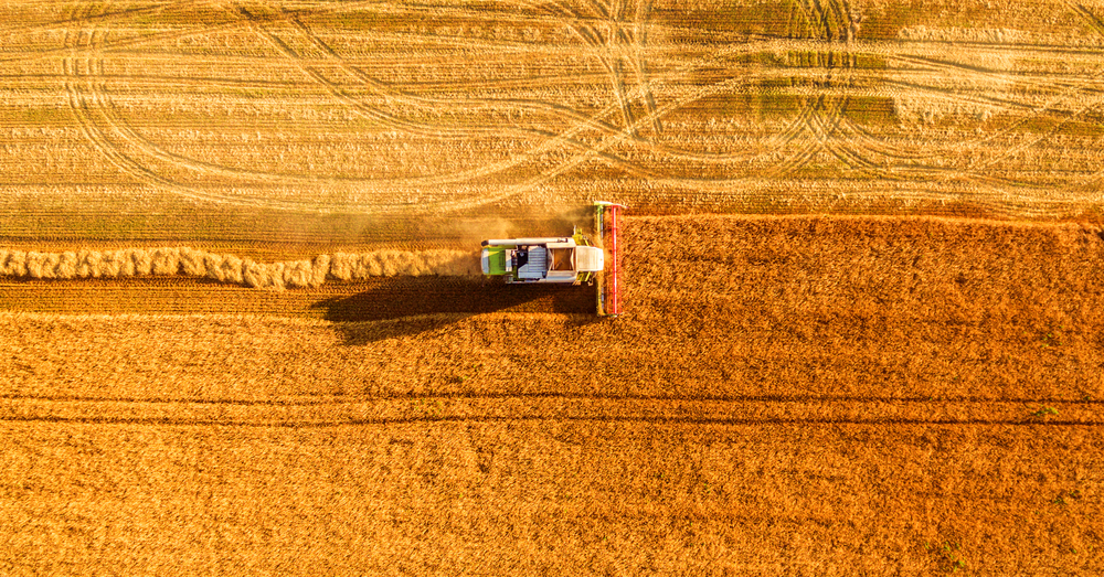 LBN_Blockchain Agriculture