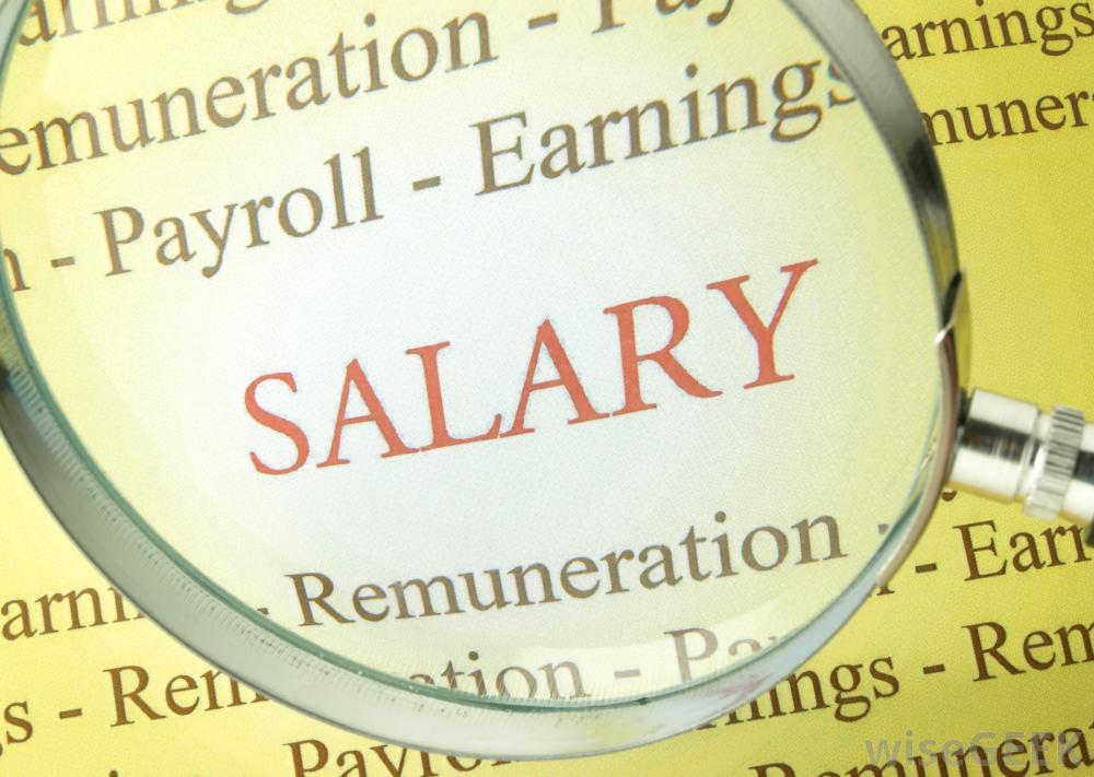 bitcoin salary, bitcoin payroll