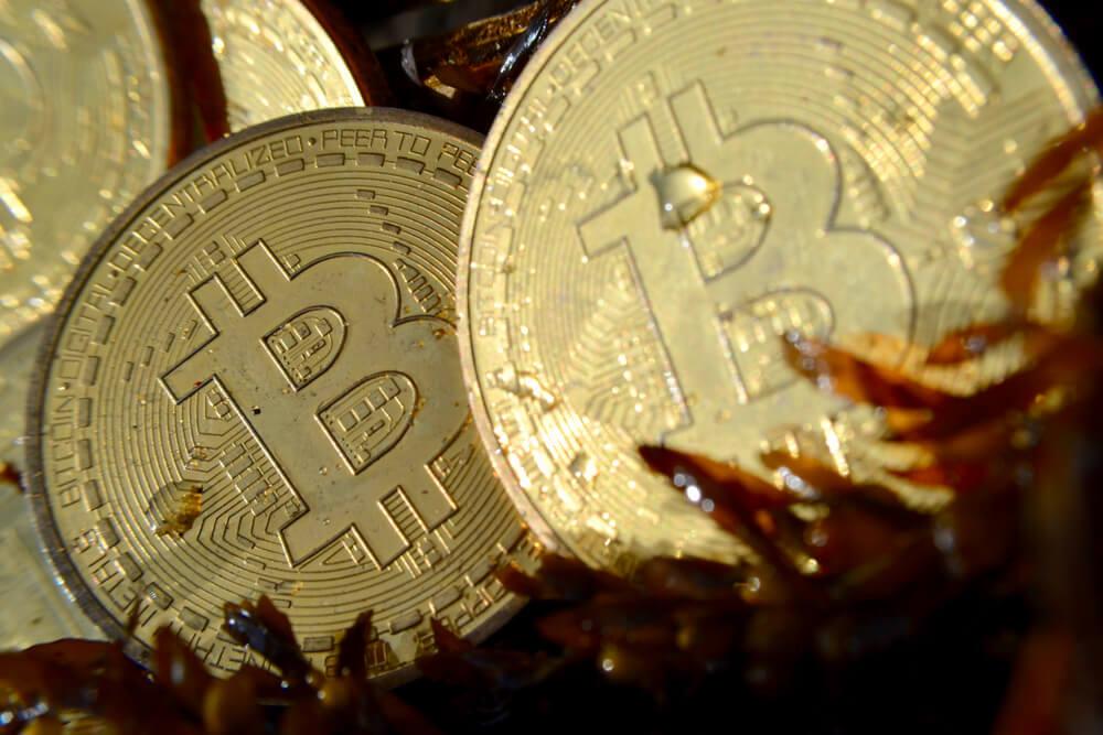 LBN Unconfirmed Bitcoin Transactions