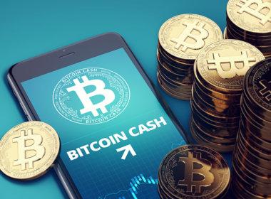 LBN Mikan Bitcoin Cash Wallet