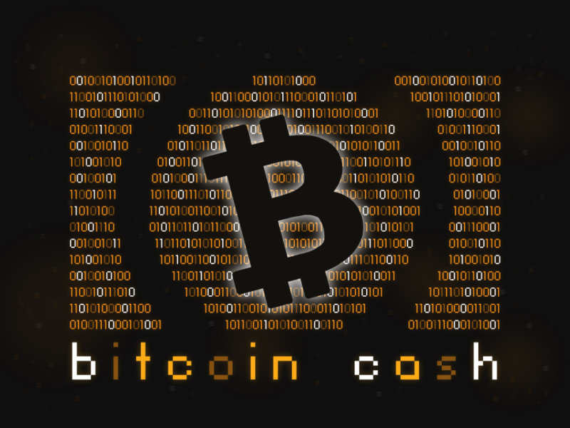 LBN Erik Voorhees Bitcoin Cash