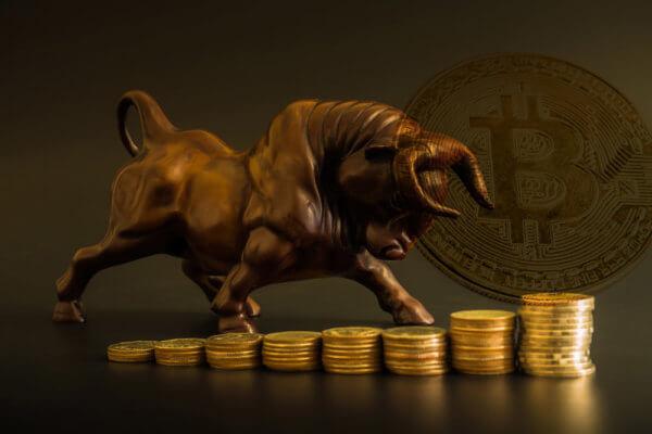 cryptocurrency bull run