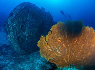 LBN Shinil Group Shipwreck Scam