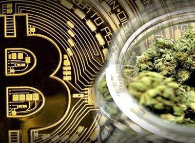 Celebrate The Legalization of Marijuana! 2020 Is Giving Away 6 FREE Moonrock Pre-rolls