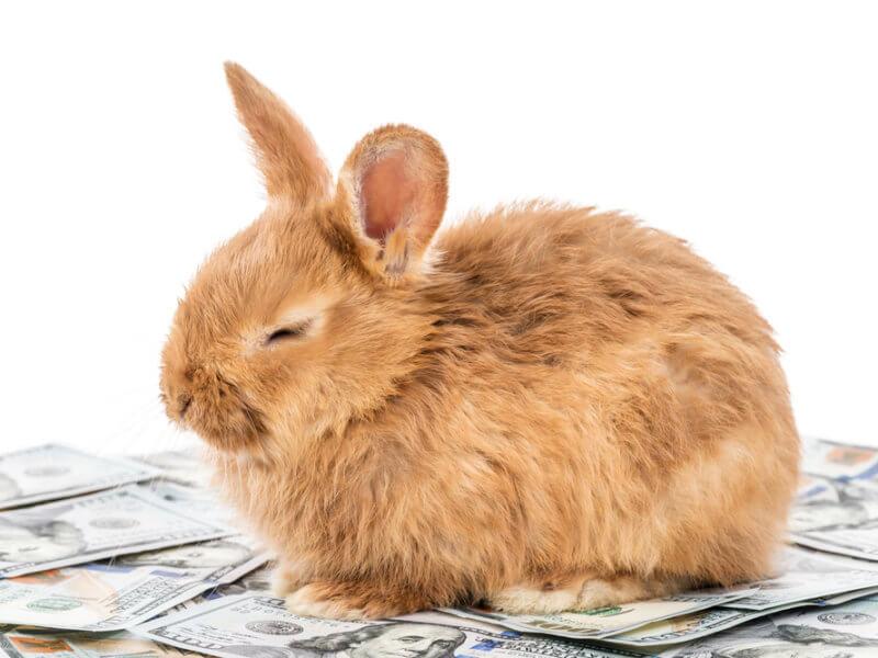 LBN Linux Rabbit Cryptojacking