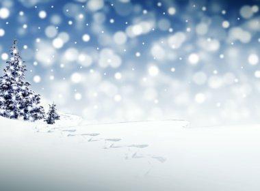 winter, crypto