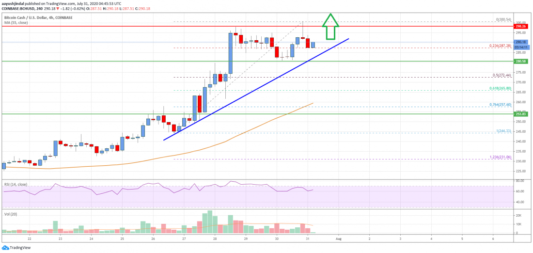 Bitcoin Cash Analysis: $230 Holds The Key But Can Bulls Clear $245?