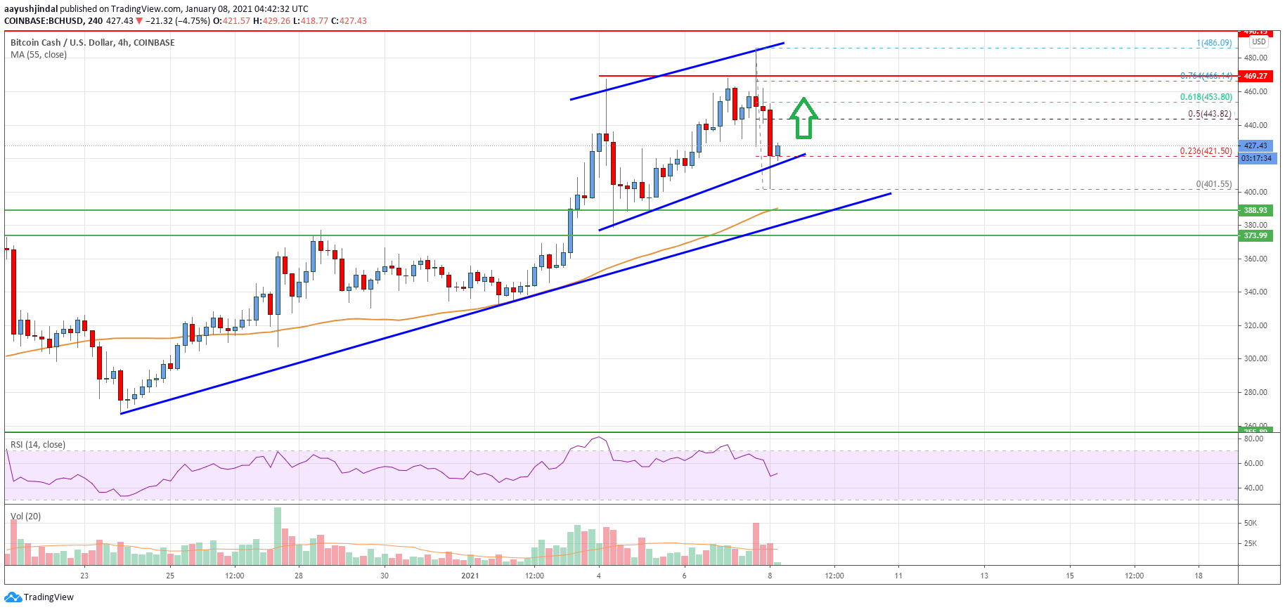 Bitcoin Cash Analysis: Fresh Rally Likely If BCH Clears $450