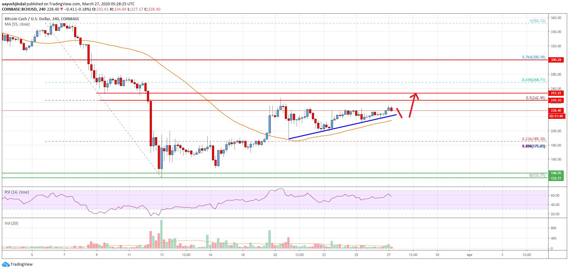 Bitcoin Cash Analysis: Bulls Facing Strong Breakout Resistance